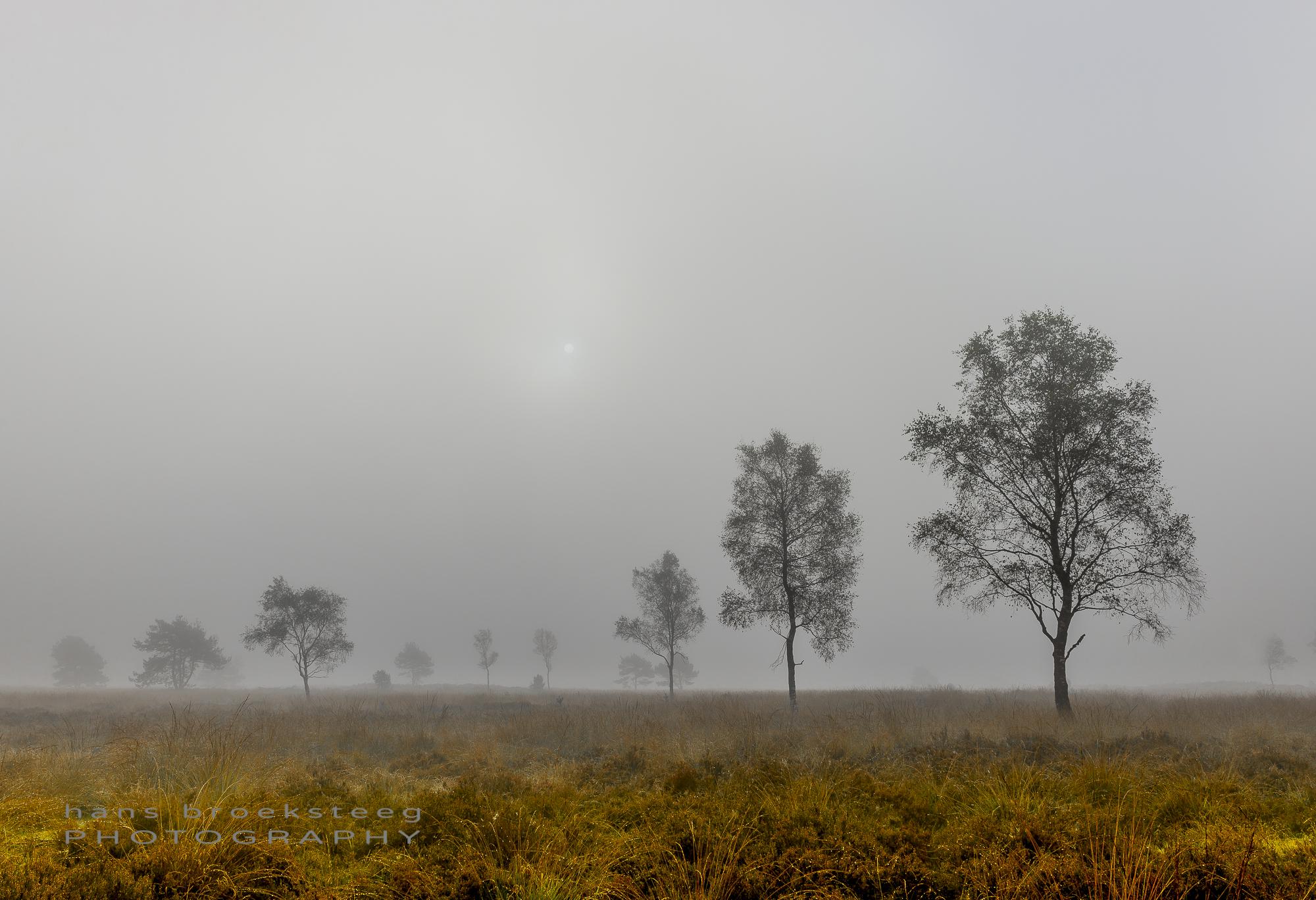 NP Veluwezoom, NL